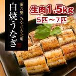 白焼うなぎ「骨・肝付き」(5匹~7匹)